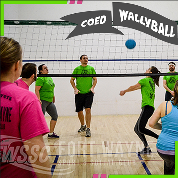 600 wallyball